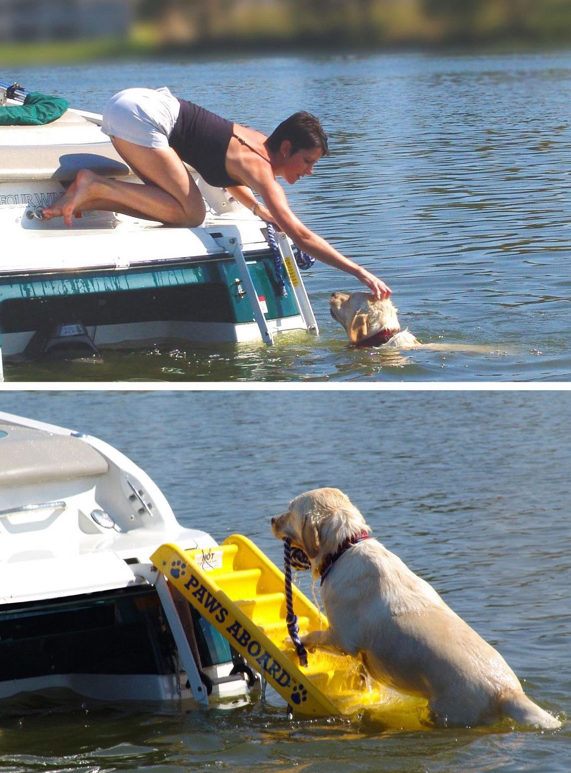 Paws Aboard   Boating Accessories   Snag-A-Slip
